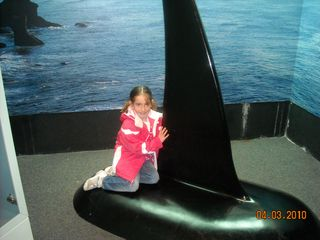 Aquarium 027