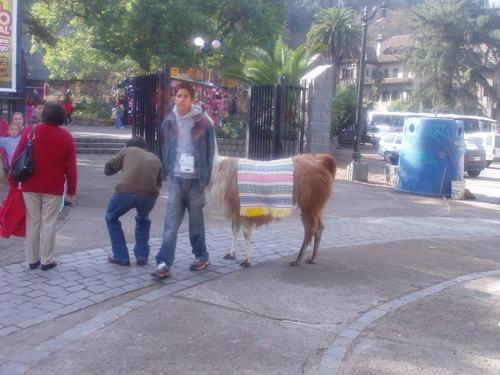 Chile_monday_july_17_019