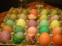 Dying_eggs_011