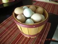 Egg_good_mail_001