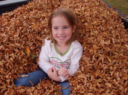 Raking_the_leaves_002